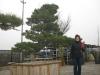 kw-7-2011-italien-nippon-bonsai-025