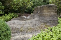 Grüner Felsengarten