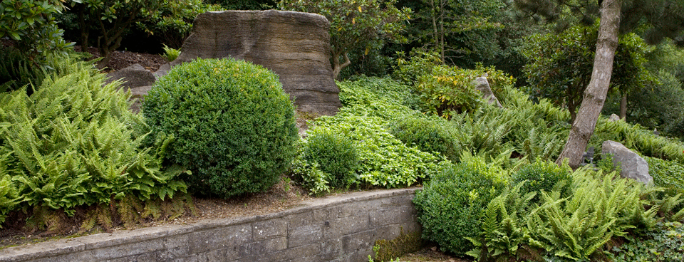 Felsengarten Slider