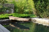 Wasserbecken mit Sprungbrett